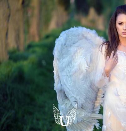 Leven met ALLURE Engelen Feng Shui 2